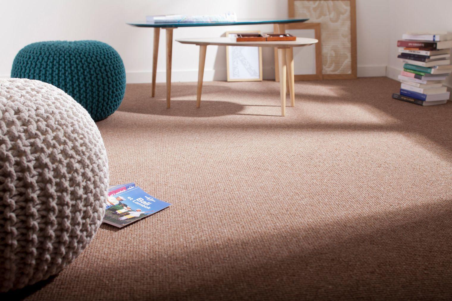 Emejing Chambre Moquette Marron Ideas - House Design - marcomilone.com