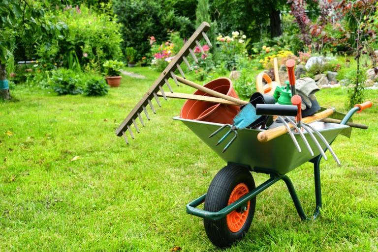 Traiter le jardin avec des méthodes naturelles